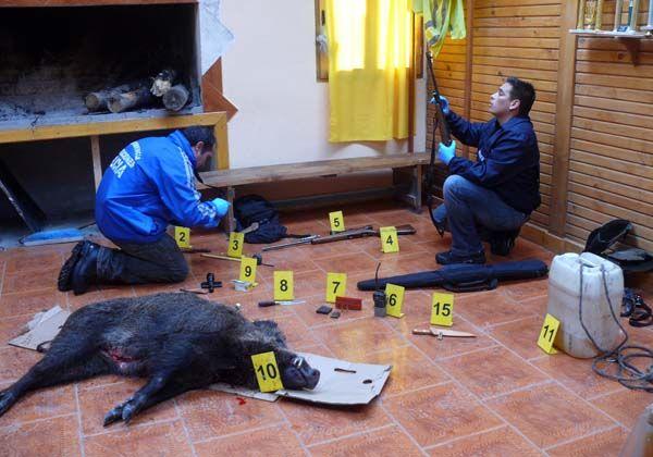 Detuvieron a tres cazadores furtivos en Junín de los Andes