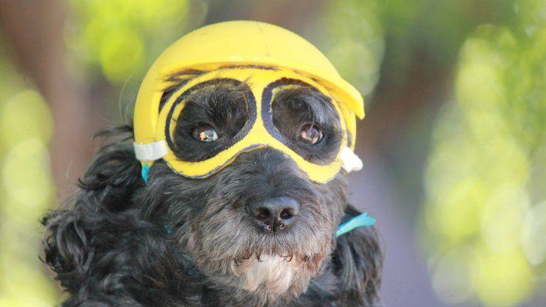 Pompicaniche. Vivimos en Plottier y ¡le gusta andar en moto! (Gloria).