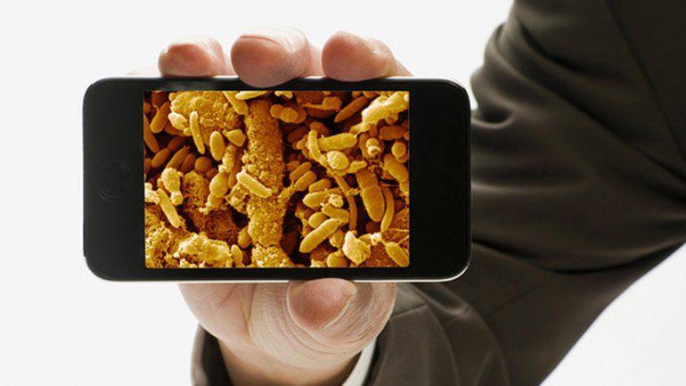 El tipo de gérmenes de los celulares es similar al de las cocinas.