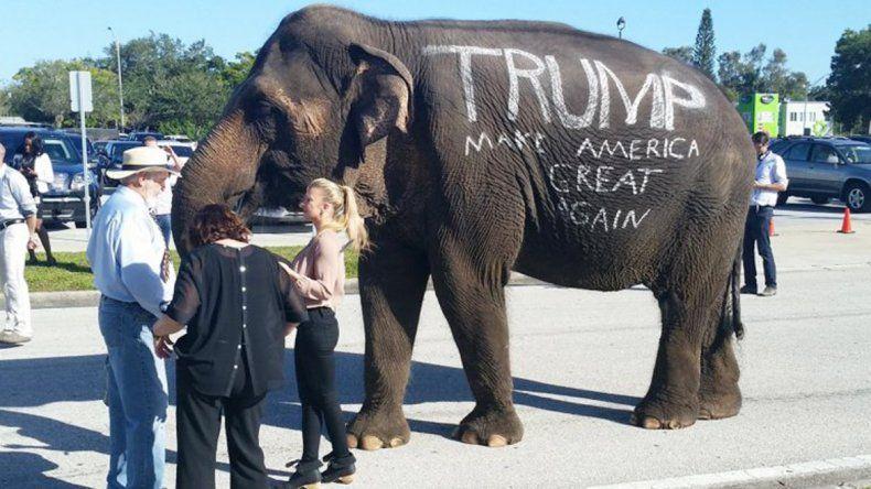 El paquidermo fue utilizado para promocionar la candidatura de Trump.