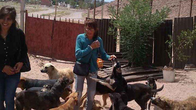 Las proteccionistas ayudan a Delia luego del incendio. Quieren que 16 perros puedan recuperarse de la tragedia.