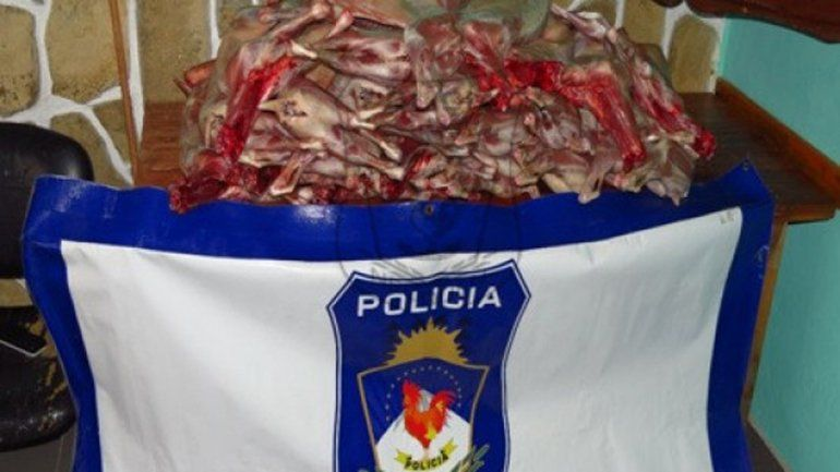 Los 24 chivitos decomisados en Caviahue por personal de Comisaría 40.