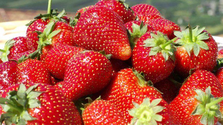 Es una de las frutas que más beneficios traen al cuerpo.