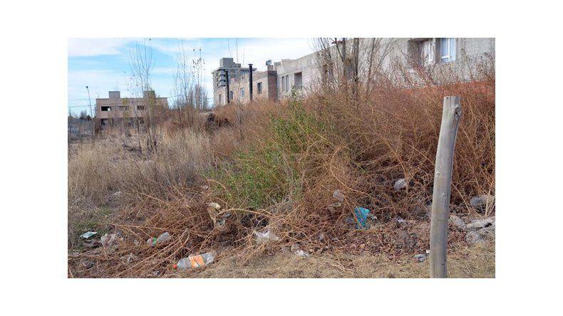 Ultimátum: dan un mes para limpiar y cercar los baldíos