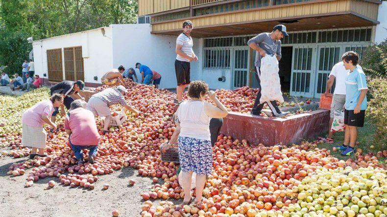La cruda imagen de la fruta tirada. Reclaman medidas para el sector.