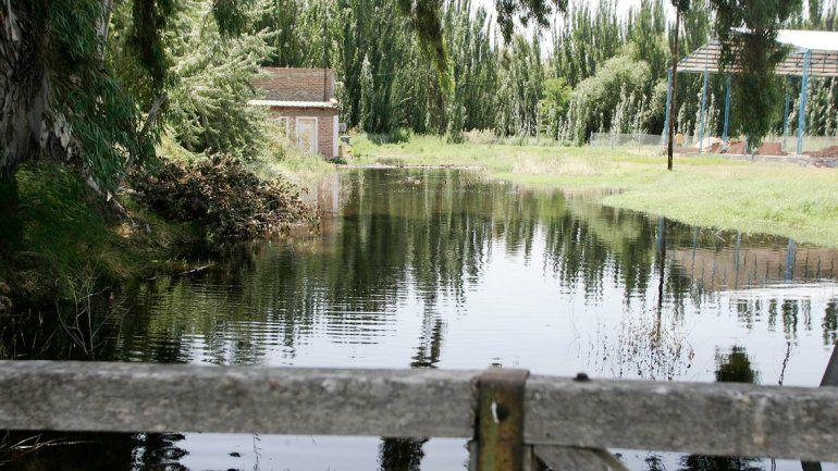 El bodeguero puede perder la cosecha de chardonnay por el agua.