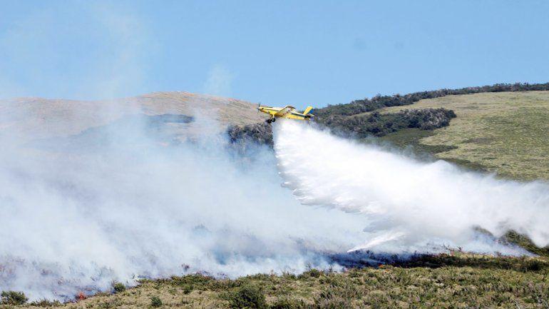 El incendio en Curruhué ya afectó 5 hectáreas de pastizales y caña colihue.