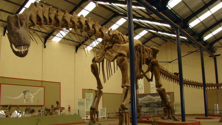 El Argentinosaurios Huinculenses en el museo Carmen Funes.