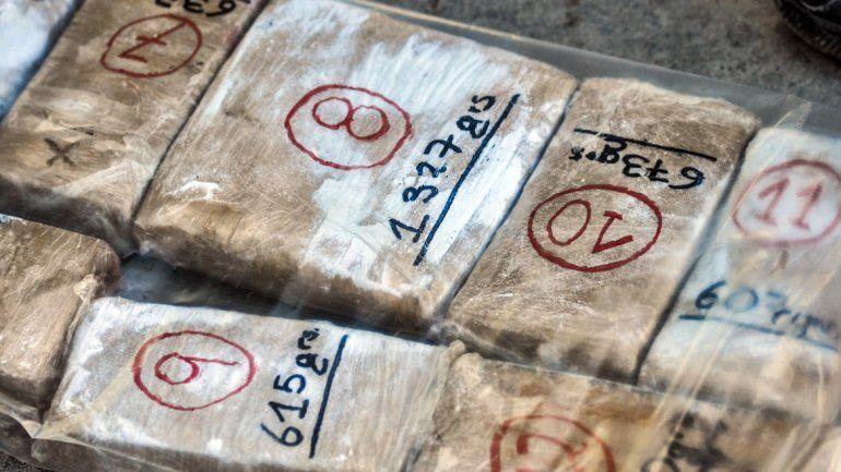 Histórico golpe al narcotráfico en Neuquén: secuestraron casi una tonelada de marihuana