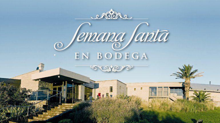 Descubrí el fabuloso mundo del vino en la Bodega Familia Schroeder.
