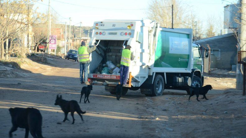 Quieren mejorar la recolección de residuos en Plottier