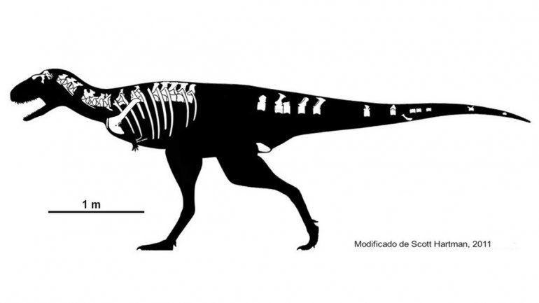 Presentarán un nuevo dinosaurio que llevará el nombre de una petrolera