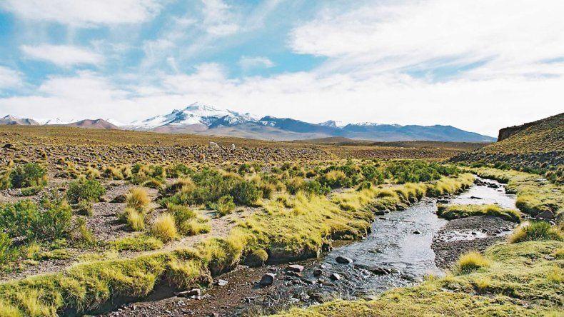 El manantial Silala tiene enfrentados a chilenos y bolivianos.