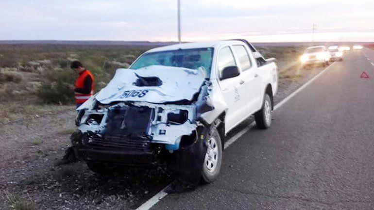 El frente de la camioneta quedó destruido tras el impacto contra uno de los animales que estaban sobre el asfalto.