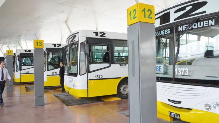 Los nuevos colectivos cubrirán los recorridos de los ramales 12 y 101.