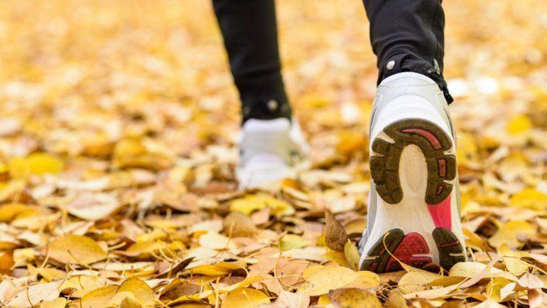 Las bajas temperaturas son positivas para el entrenamiento físico.