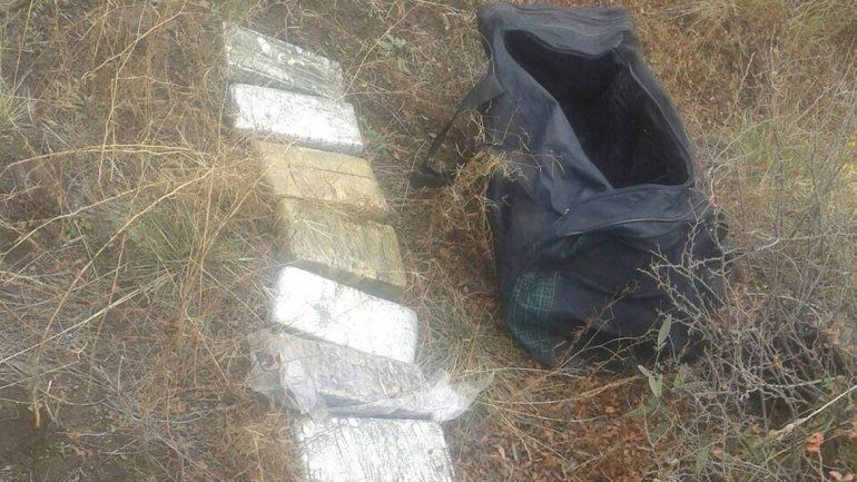 Los nueve ladrillos estaban debajo de un nylon entre las ramas y fueron encontrados por Gendarmería.