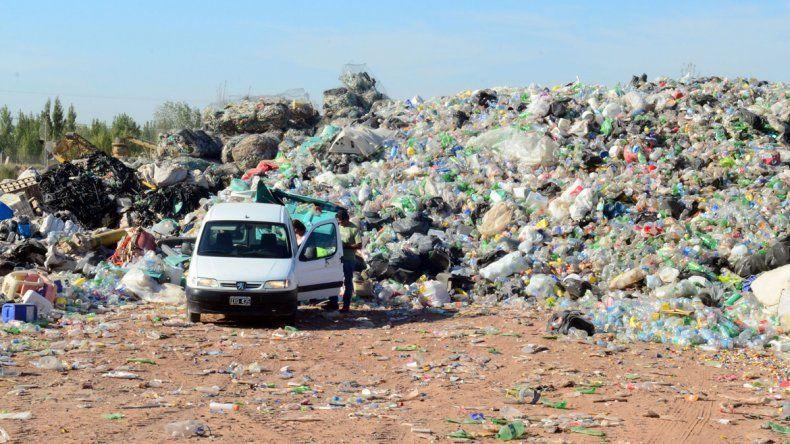 Todas las escuelas colaboran con la campaña del plástico reciclado.