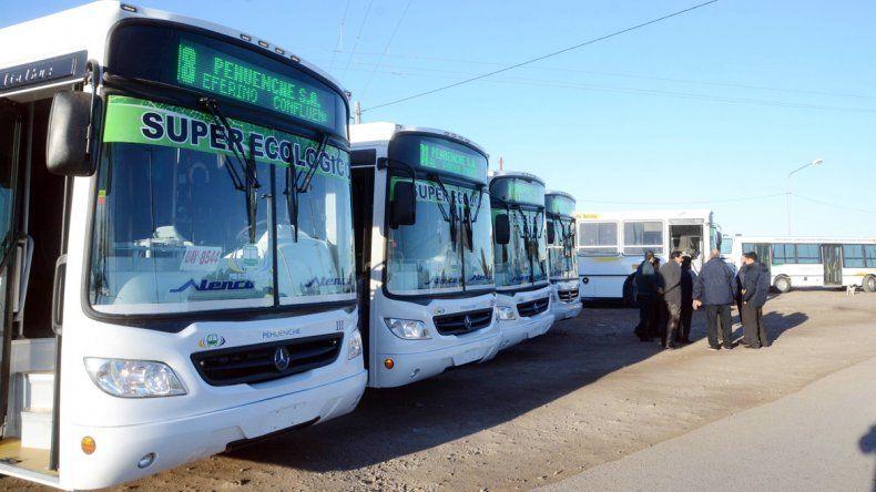 Las nuevas unidades de colectivos de la empresa Pehuenche todavía no pudieron debutar.
