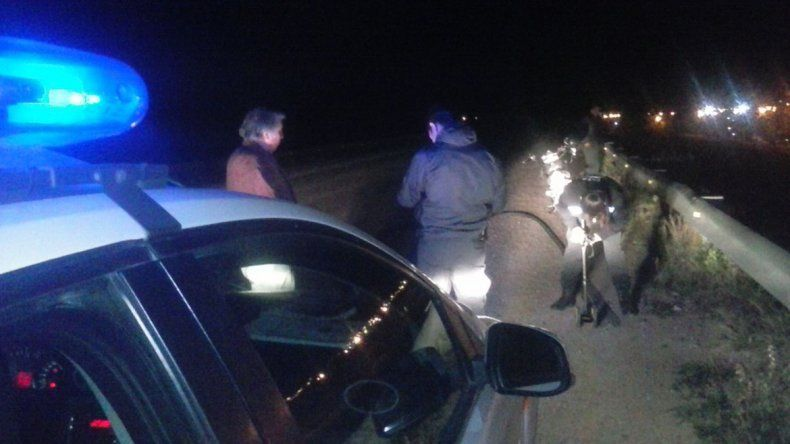 Ruta Chica: un hombre murió tras caer con su auto a un canal de riego