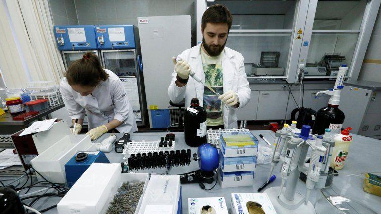 Científicos catalanes y australianos inventaron una máquina capaz de ponderar la edad