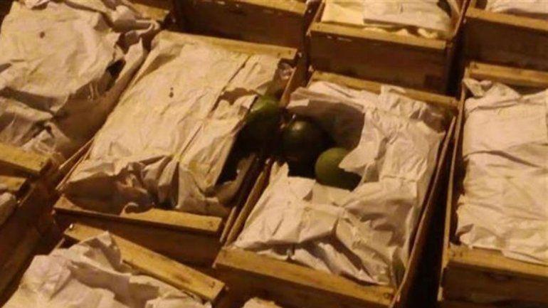 Encontraron droga en el camión de una sobrina del gobernador Insfrán