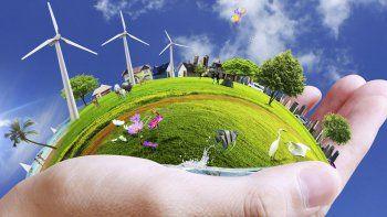 Las acciones de muchas ONG a nivel mundial van rindiendo sus frutos, especialmente porque la toma de conciencia de la gente es cada vez mayor y eso colabora con los cuidados ambientales.