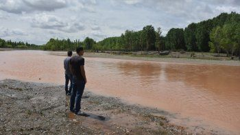 Marrón como el río Paraná. Así lucían ayer las aguas del río Limay luego de las fuertes precipitaciones del domingo y el lunes en la zona de la confluencia.
