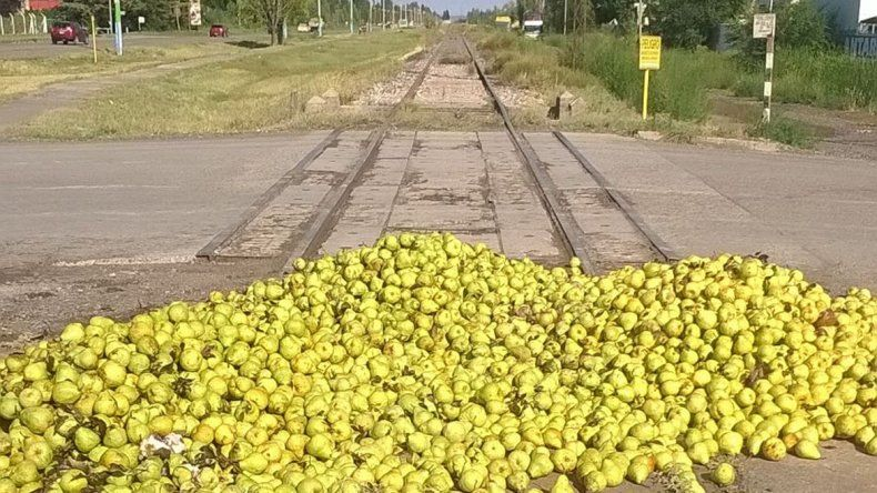 Productores de Oro tiraron 60 mil kilos de pera sobre las vías