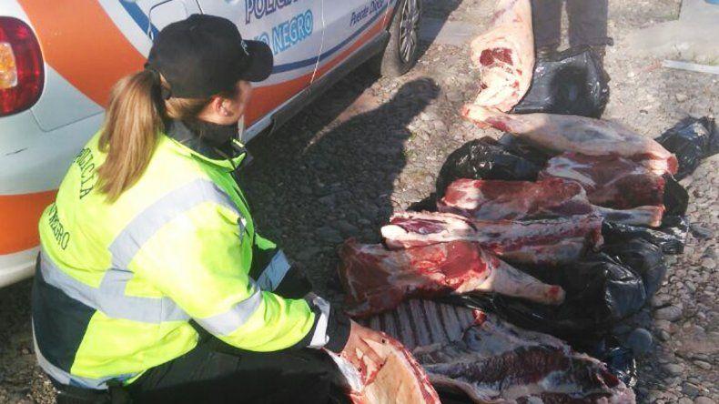 Decomisaron 250 kilos de carne que querían ingresar a Río Negro