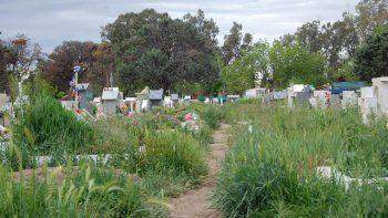 En el cementerio proliferan yuyos, que crecen sin control. Además, la basura de los tachos desborda y se desparrama.
