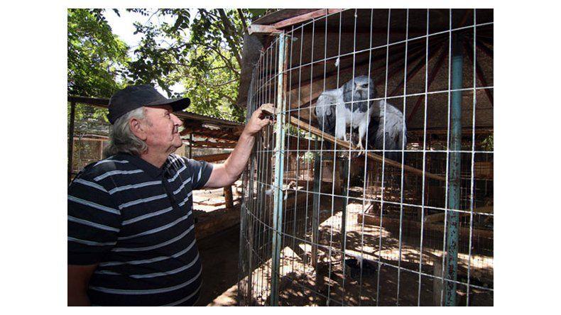 Los animales de la reserva Luan esperan una ayuda de la Provincia