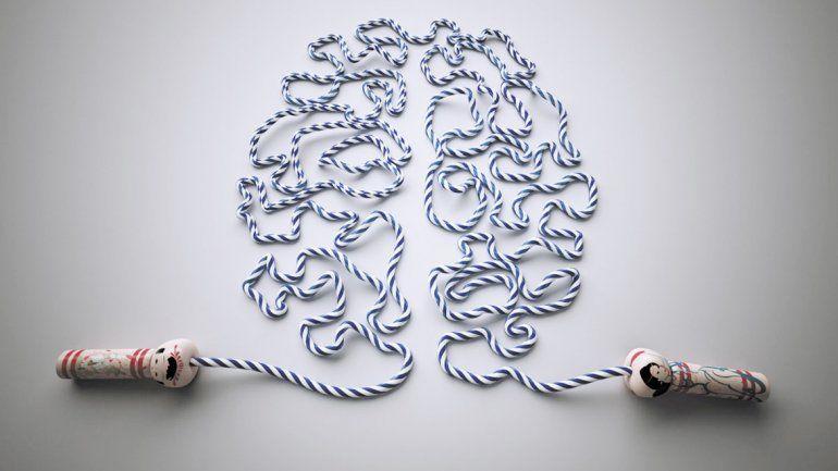 El cerebro es el centro del sistema nervioso y regula todas las acciones y reacciones del cuerpo. Ejercitarlo asegura una mejor calidad de vida.