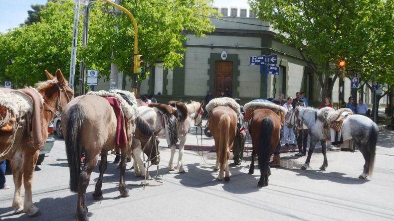 Los crianceros dejaron los caballos estacionados en la Gobernación.