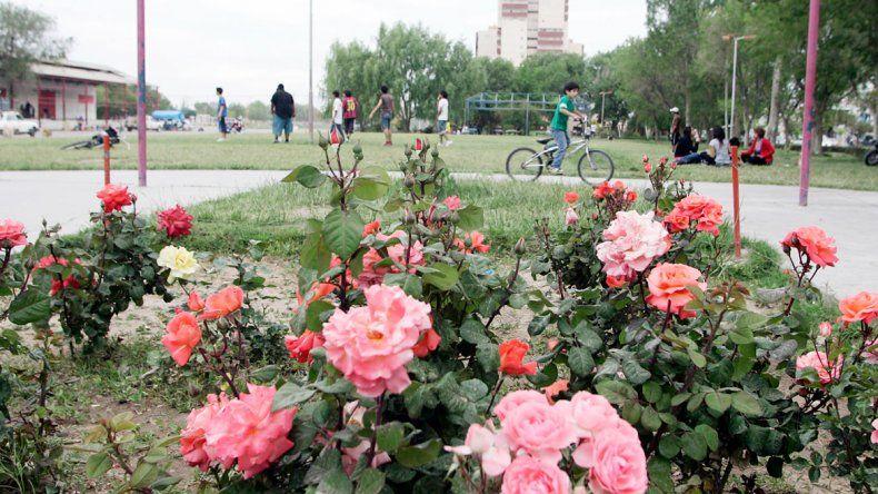 Cinco Saltos logró mejorar sus espacios públicos en estos últimos años.