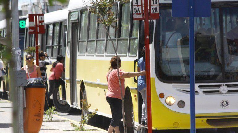 El análisis del servicio fue encargado a la Universidad del Comahue.