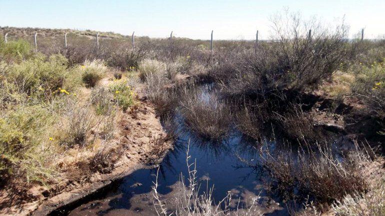 Los desechos industriales formaron lagunas en el predio.