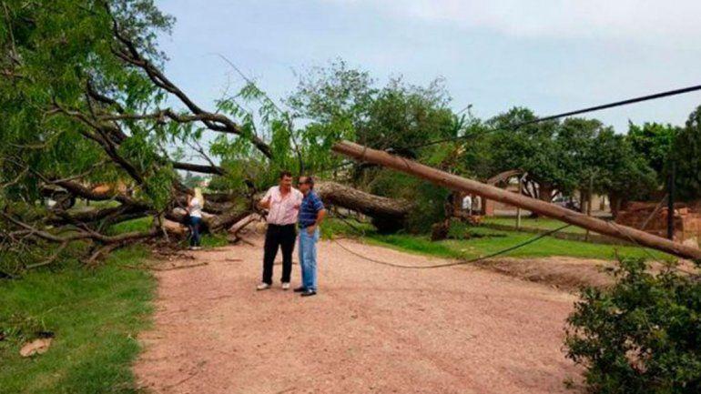 Por el tornado se registraron 40 voladuras de techos y 150 árboles caídos.