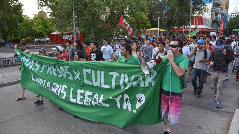 Neuquén se suma al debate por la marihuana medicinal