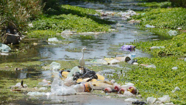 Los vecinos que padecen el mal olor y la mugre dicen que quejarse ya no sirve de nada. Algunos hasta aseguran que el estado del agua es imposible de describir.