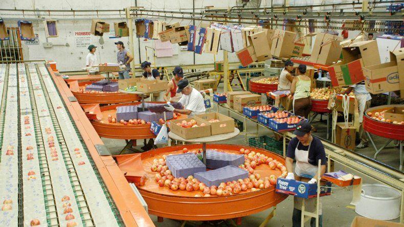 Las exportaciones de peras y manzanas ya no pagarán impuestos.