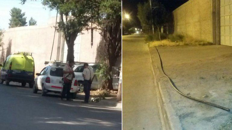 En Confluencia intentaron robar los cables de teléfono y hay 500 vecinos sin servicio