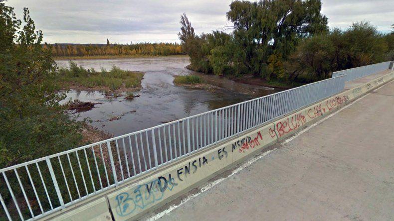 Río Limay en la Isla 132.
