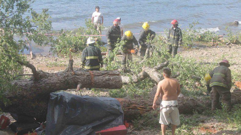 La Justicia realizó peritajes en los campings Lolen y Catritre.