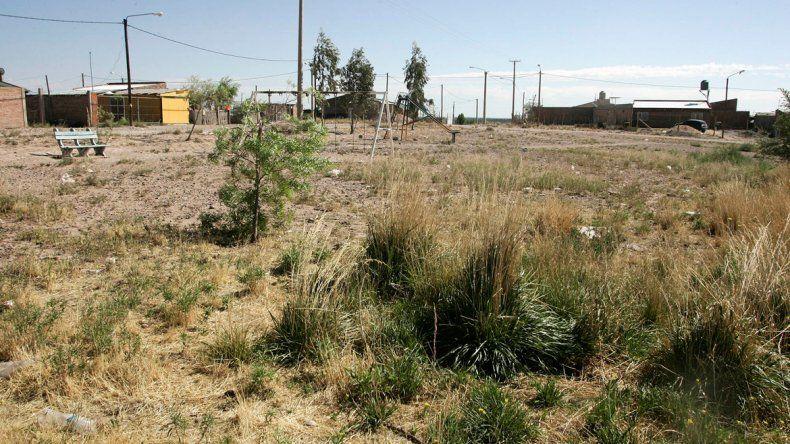 Los yuyos crecen con más facilidad en esta época del año. Hay propietarios con terrenos que lucen abandonados.