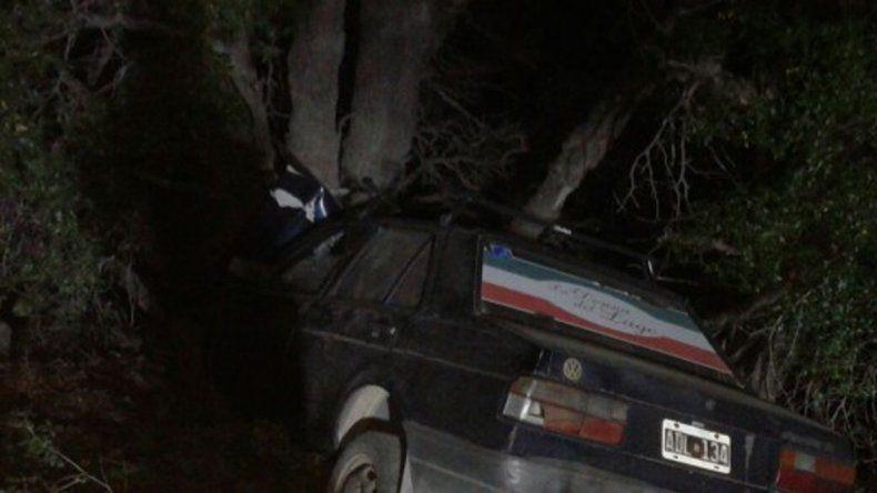 Un buey suelto casi provoca una tragedia en la Ruta 40