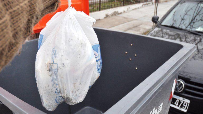 La separación de residuos comenzó a implementarse el 4 de enero.