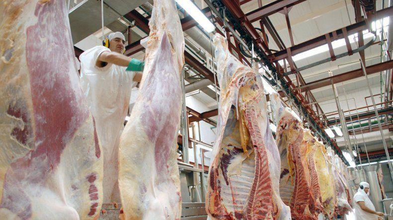 La reactivación de la industria frigorífica es uno de los objetivos a partir de la unificación de las zonas.