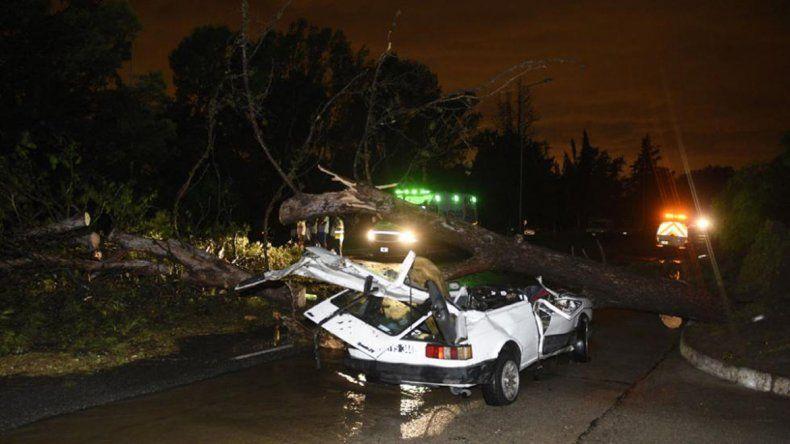 Un tronco cayó sobre un Fiat 147 y mató a una beba que viajaba en su interior junto a sus padres.