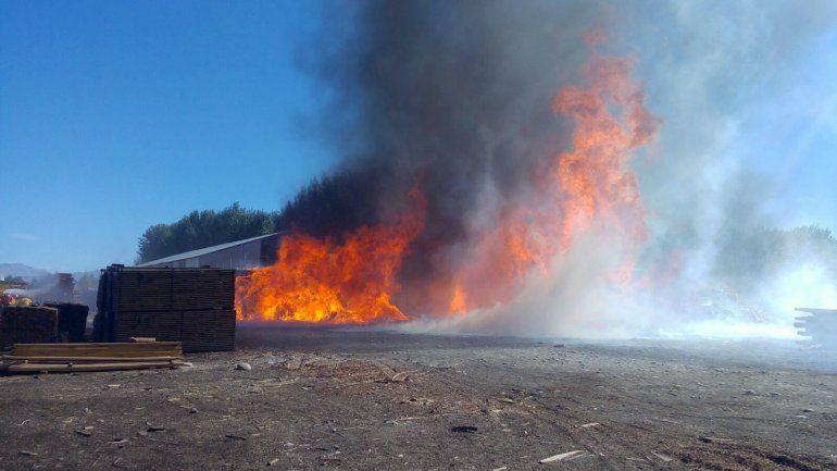 Bomberos combaten un importante incendio en el aserradero de la firma Corfone